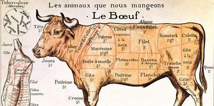 Course Image FCG622-0000-2021-1-Cuisine 3